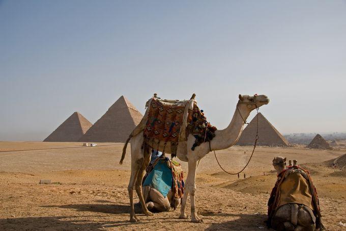 2.エジプトの治安