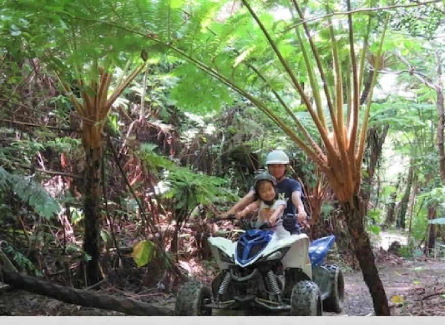 5.やんばるの森バギーライド&ジャングルウォーク