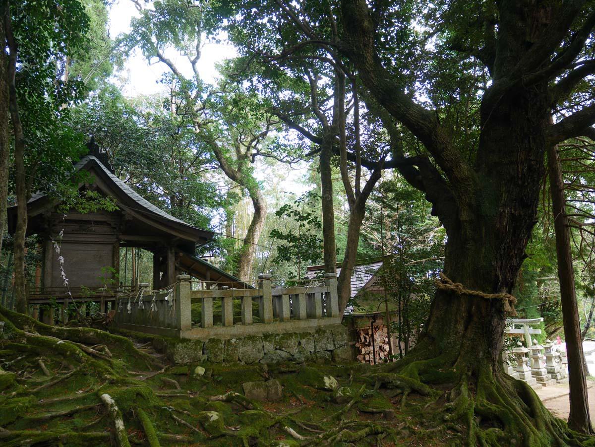 1日目午後:「赤猪岩(あかいいわ)神社」で再起・再出発を願う(南部町)