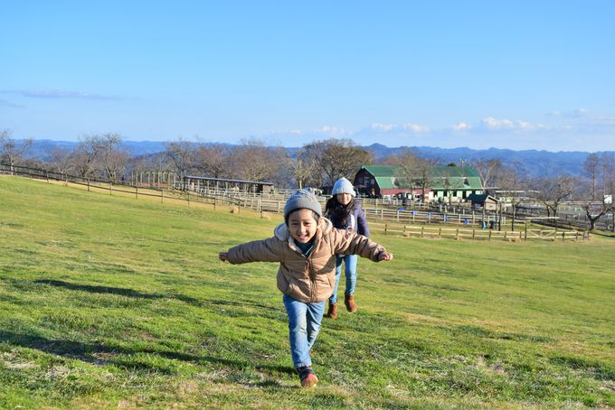 千葉県のかずさ・臨海エリアを巡るドライブ。今回のプランをご紹介!