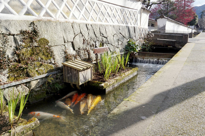 1日目午後:ノスタルジックな小京都「殿町通り」