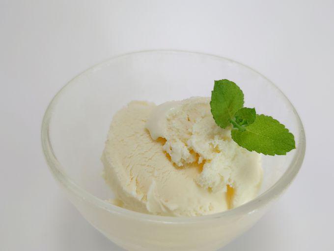 やっぱりおいしい!沖縄のアイスクリーム