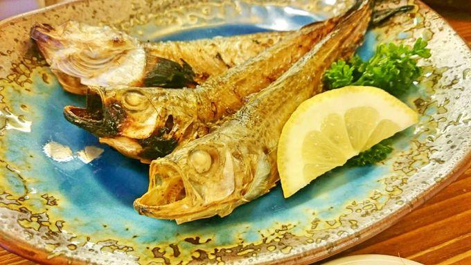 忘れちゃいけない秋田の海鮮グルメたち