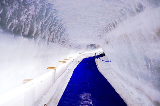 スイスの名峰「マッターホルン」は大迫力パノラマビュー