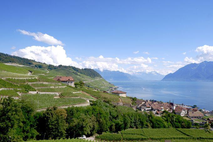 絶景と幻のスイスワインでとびっきりのグルメを