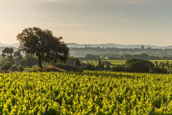 魅力あふれるバルセロナ郊外3つの県へワンデイトリップ!
