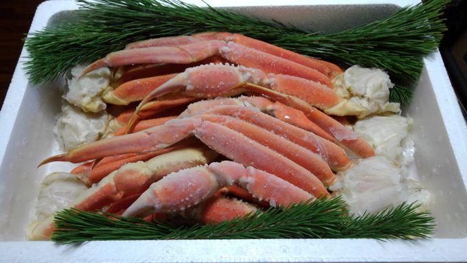 福井の海の幸を返礼品でゲット!