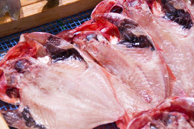 岡山の新鮮な魚介類をご自宅へ!