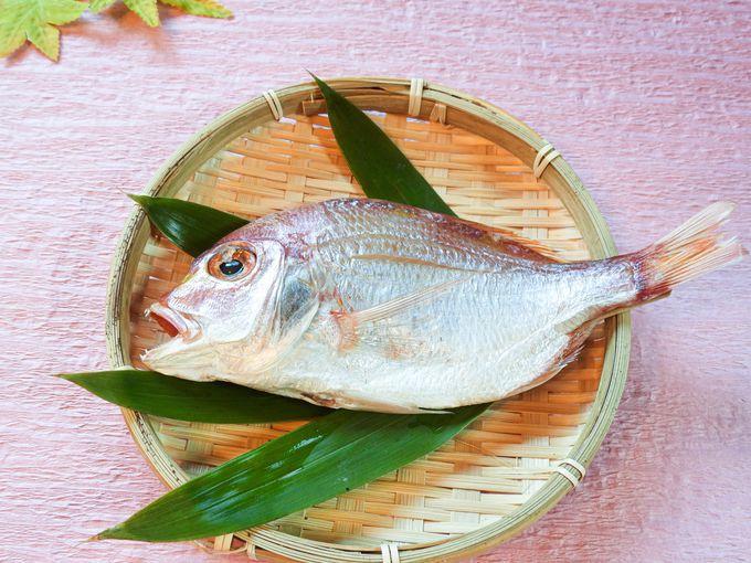 徳島のお魚は新鮮で食べごたえ抜群!