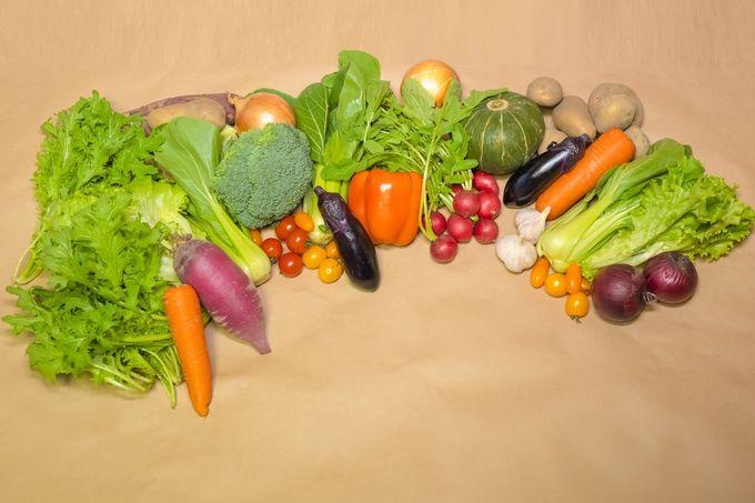 高知のおいしい野菜でおうち料理をグレードアップ