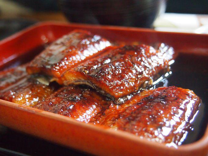 贅沢に味わっちゃおう!高知の魚料理