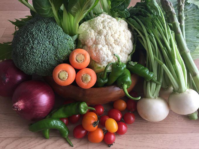 新鮮な野菜とフルーツで愛媛旅行気分!