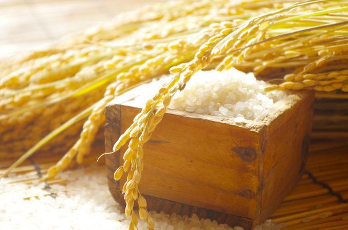 宮崎産の野菜&お米でおうちグルメを豪華に!