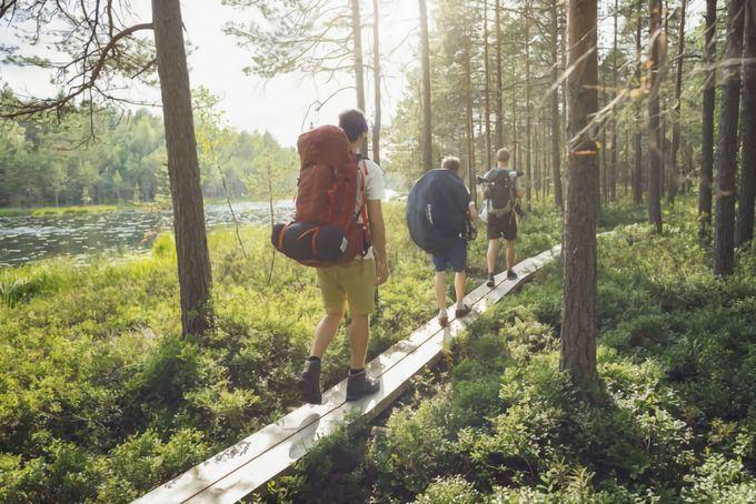 ヌークシオ国立公園でベリー摘み