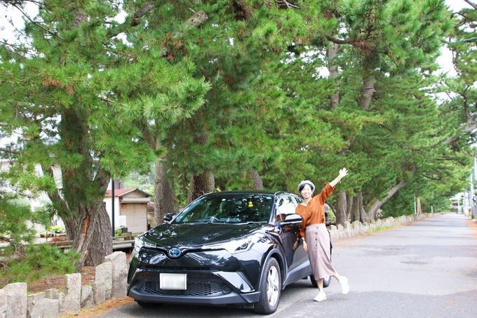 静岡ドライブが超お得!高速道路乗り放題プランはコレ