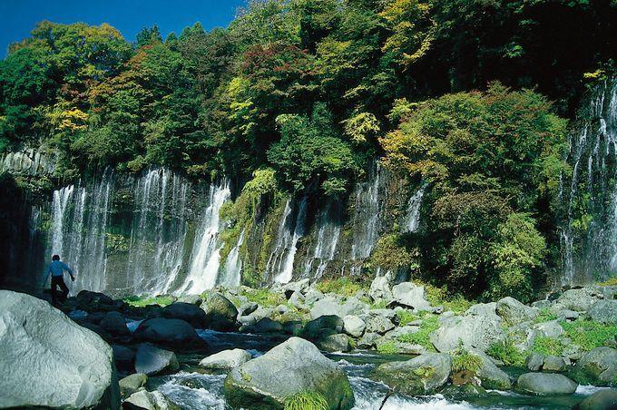 都内から1時間半!富士山の麓で大自然を満喫