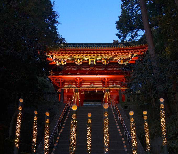 幻想的な空間!期間限定の竹とうろうライトアップ