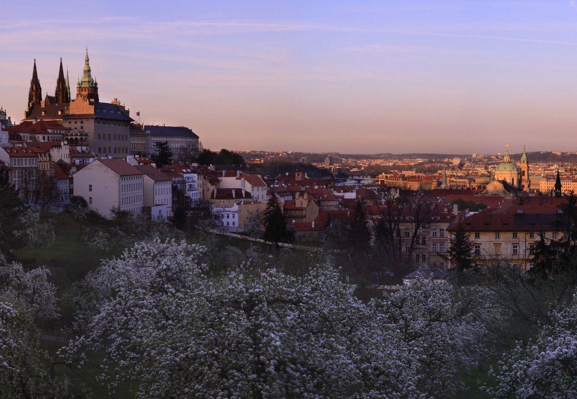 古城と桜の絶景!黄金色のビールも絶品