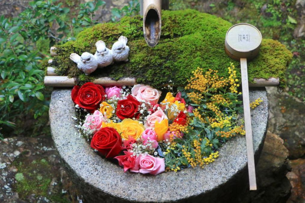 密を避けた新しい京都旅へ!日本の原風景に出会えるとっておきサイクリングコース