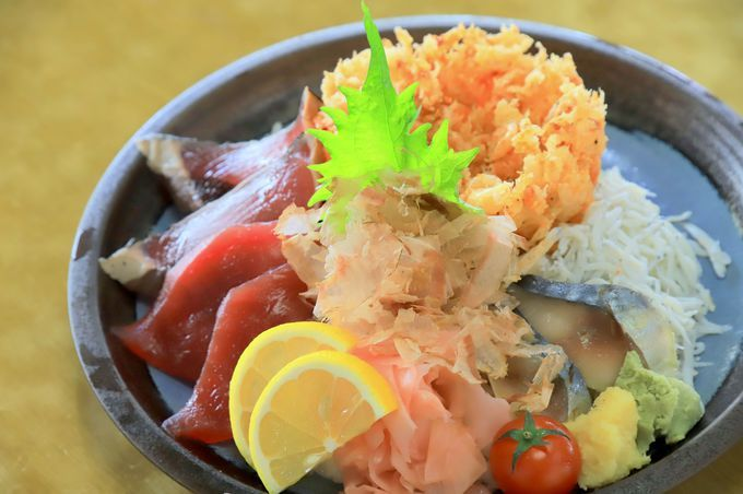 静岡グルメ堪能!海の幸を味わう贅沢コース