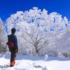 土庄 雄平のプロフィール写真