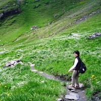 高橋 樂のプロフィール写真