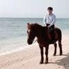 橋本 将人のプロフィール写真