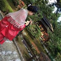 Takamatsu Miikoのプロフィール写真